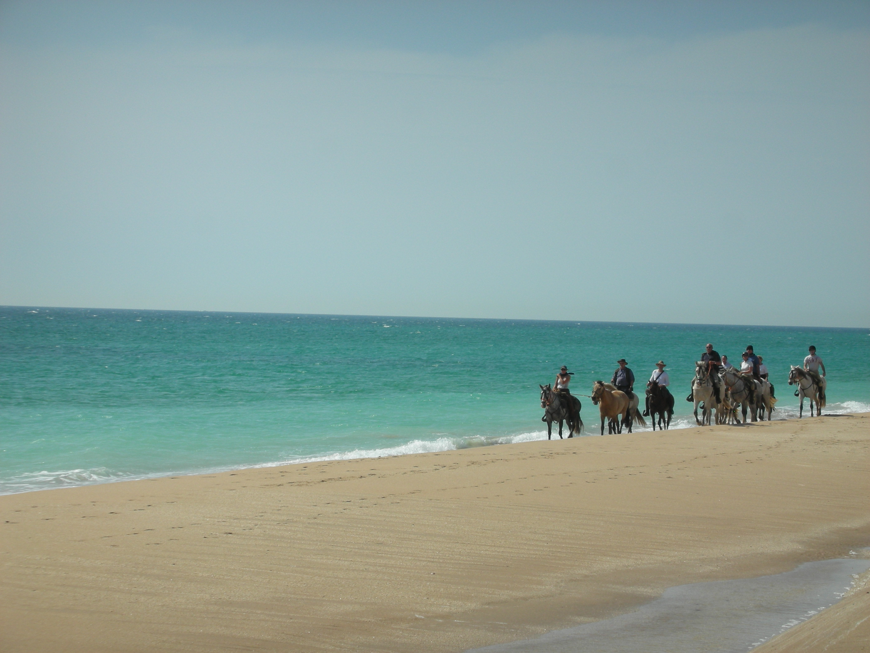 Playa de El Palmar, Vejer  News & Views from the Califa