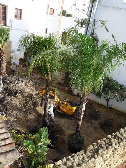 Los trabajos comienzan en el jard n del califa news for El jardin del califa precios