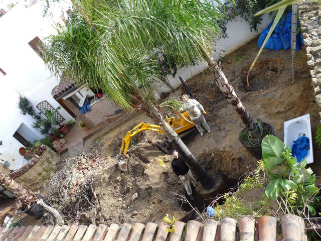 Los trabajos comienzan en el jard n del califa news for Los jardines del califa