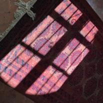 Winter sun on new rug